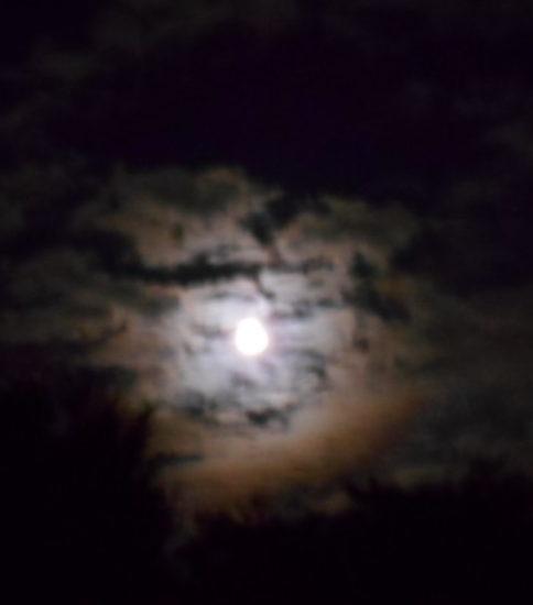 中秋(ちゅうしゅう)の名月