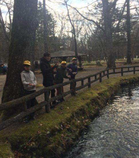 魚と森の観察園