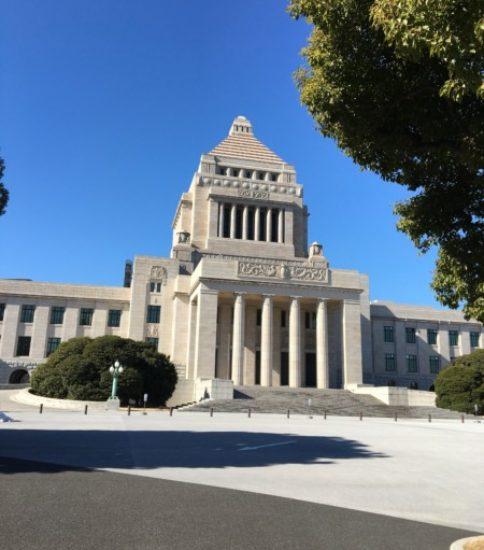 国会議事堂に着きました!