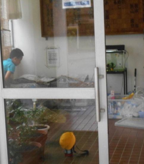 うさぎ小屋をきれいに保つ