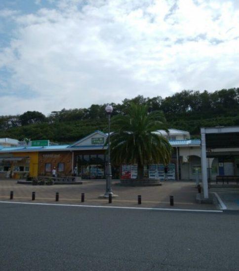 大貫海浜学園②